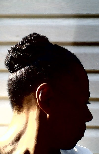 Twists Pinned In A Up Bun.