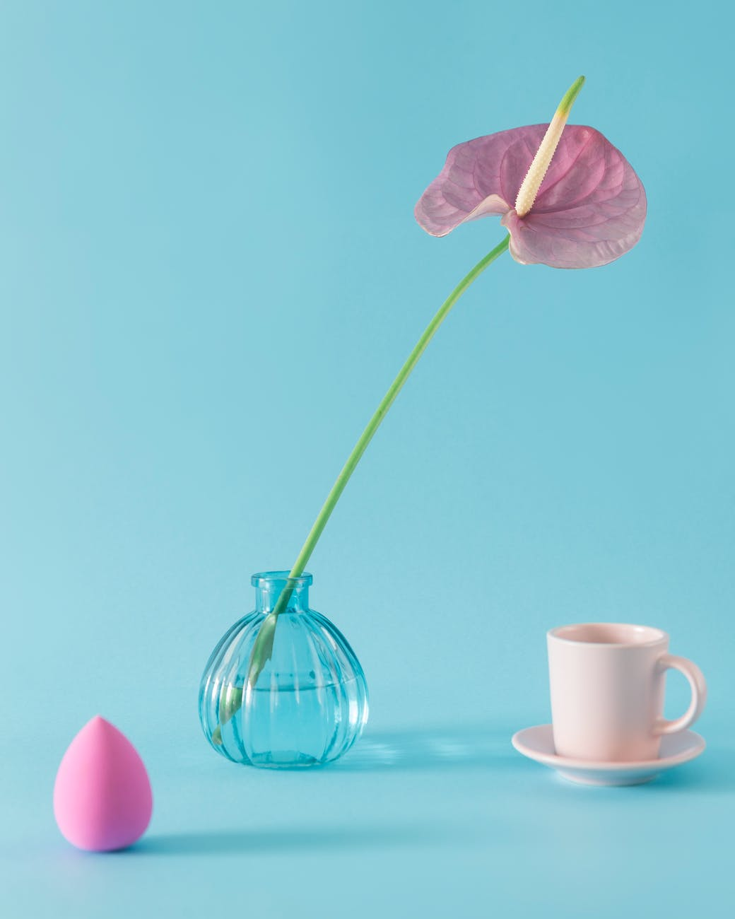 pink anthurium in vase near makeup sponge and cup